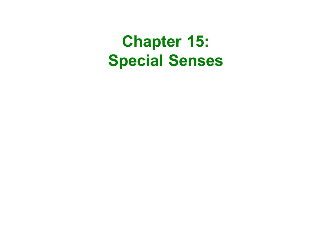 Chapter 15: Special Senses