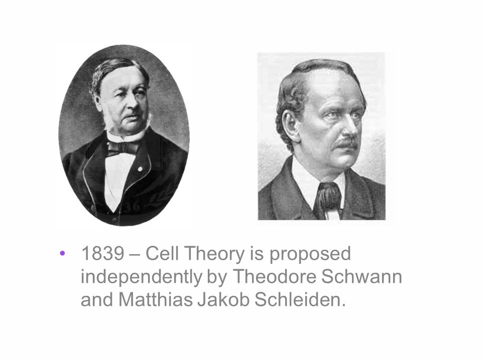 1839 – Cell Theory is proposed independently by Theodore Schwann and Matthias Jakob Schleiden.