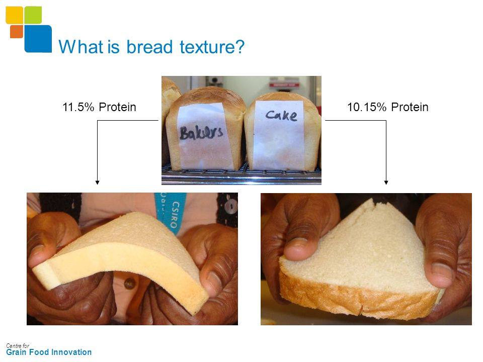 Centre for Grain Food Innovation What is bread texture? 11.5% Protein10.15% Protein