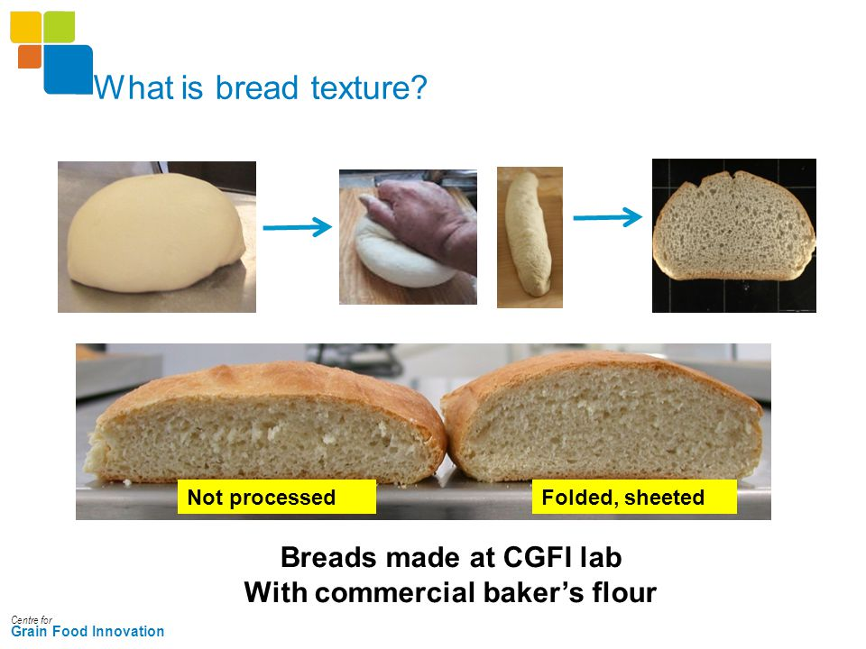 Centre for Grain Food Innovation What is bread texture? Not processedFolded, sheeted Breads made at CGFI lab With commercial baker's flour