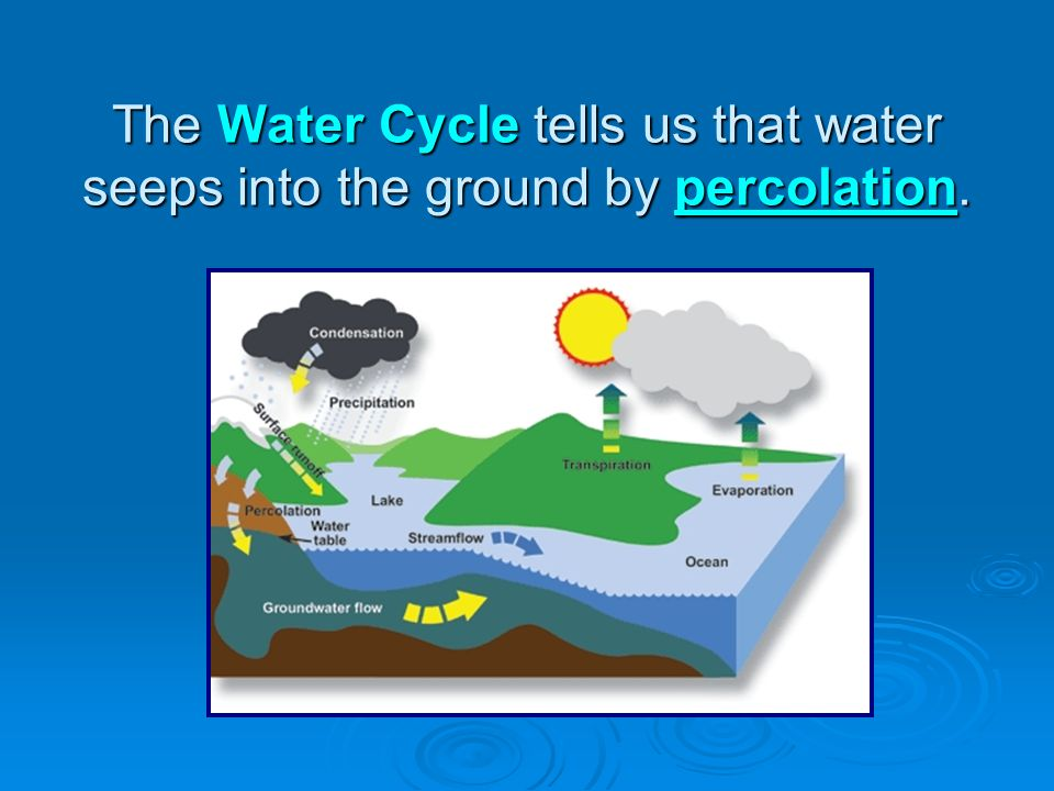 The Water Cycle tells us that water seeps into the ground by percolation.