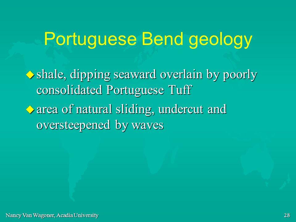 Nancy Van Wagoner, Acadia University 28 Portuguese Bend geology u shale, dipping seaward overlain by poorly consolidated Portuguese Tuff u area of nat
