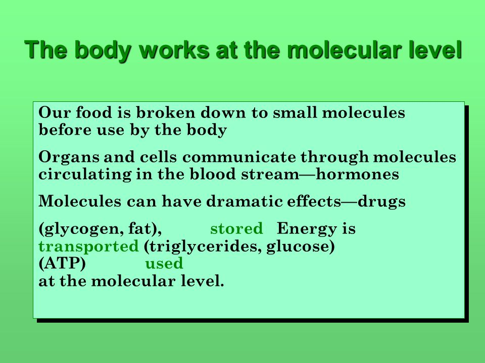 Our food is broken down to small molecules before use by the body Organs and cells communicate through molecules circulating in the blood stream—hormones Molecules can have dramatic effects—drugs Energy is stored(glycogen, fat), transported (triglycerides, glucose) used (ATP) at the molecular level.