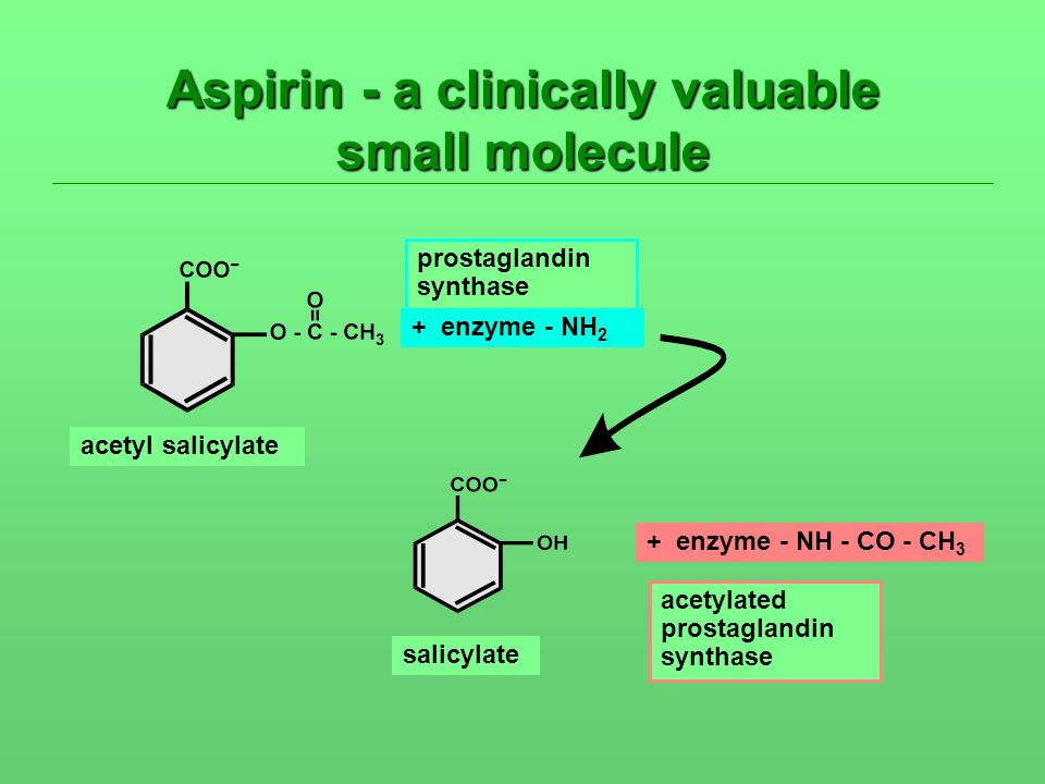 Aspirin - a clinically valuable small molecule acetyl salicylate + enzyme - NH 2 + enzyme - NH - CO - CH 3 salicylate prostaglandin synthase acetylate
