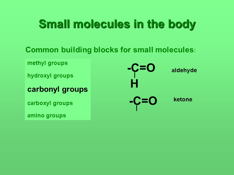 Small molecules in the body Common building blocks for small molecules : methyl groups hydroxyl groups carbonyl groups carboxyl groups amino groups -C=O H aldehyde -C=O ketone