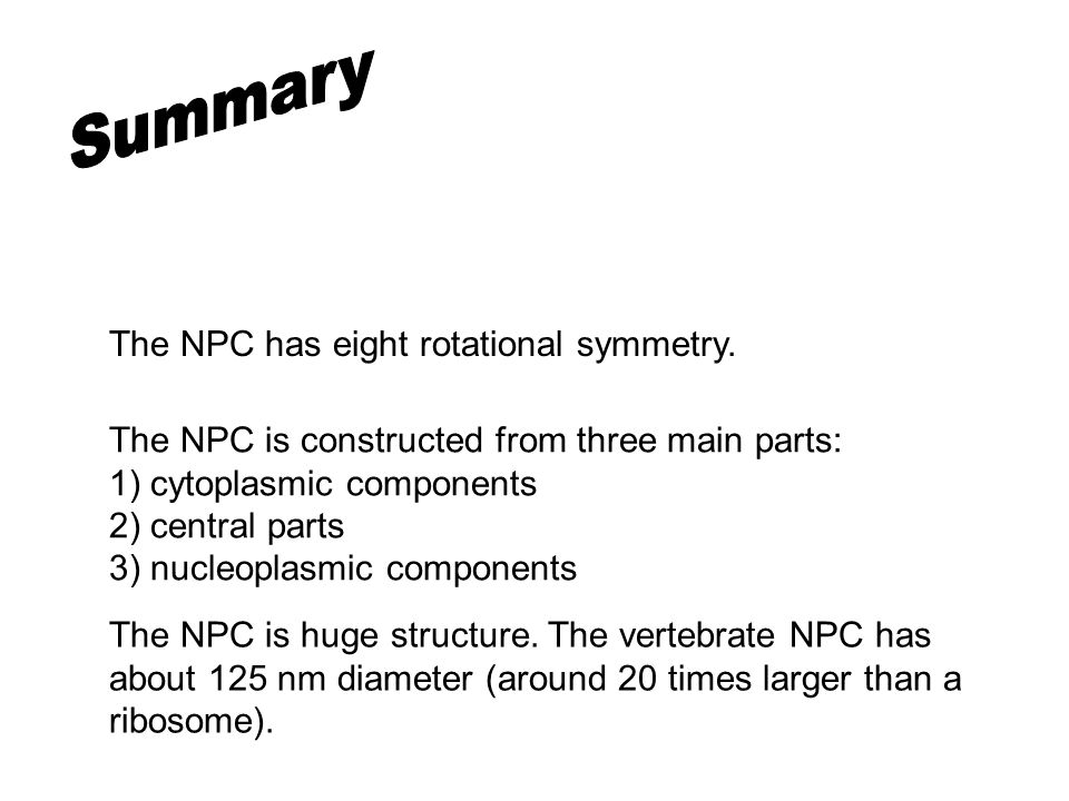 The NPC is constructed from three main parts: 1) cytoplasmic components 2) central parts 3) nucleoplasmic components The NPC has eight rotational symmetry.