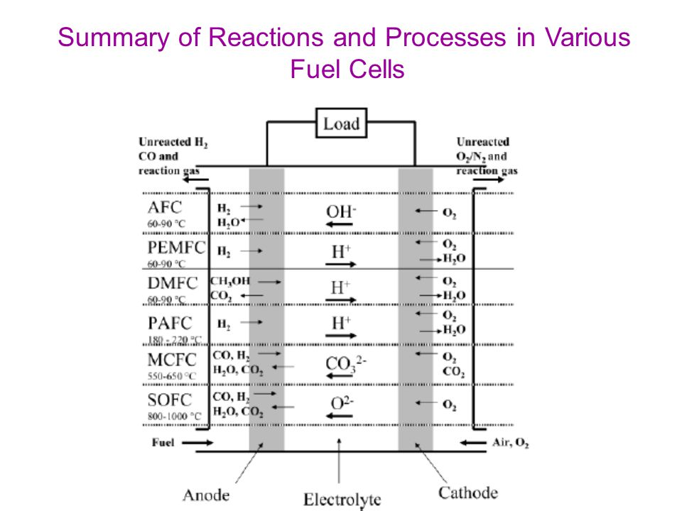 Summary of Reactions and Processes in Various Fuel Cells