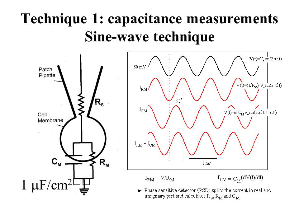 Technique 1: capacitance measurements Sine-wave technique 1  F/cm 2