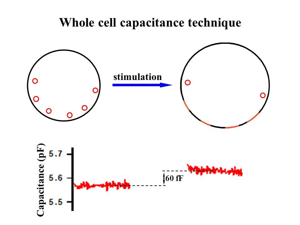 Whole cell capacitance technique stimulation Capacitance (pF) 60 fF