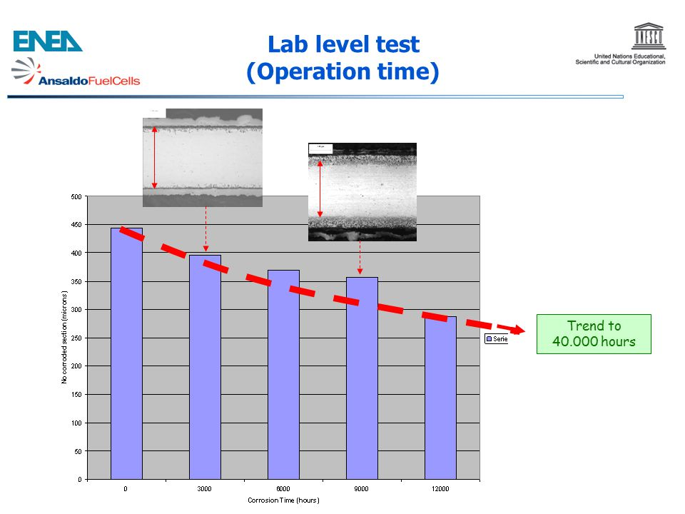 Trend to 40.000 hours Lab level test (Operation time)
