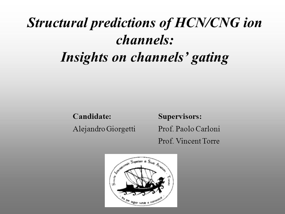 Structural predictions of HCN/CNG ion channels: Insights on channels' gating Candidate:Supervisors: Alejandro GiorgettiProf.