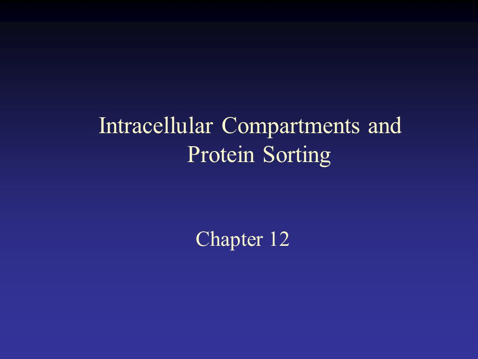 Chapter 12 Intracellular Compartments and Protein Sorting