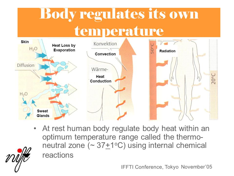IFFTI Conference, Tokyo November'05 Body regulates its own temperature At rest human body regulate body heat within an optimum temperature range called the thermo- neutral zone (~ 37+1 o C) using internal chemical reactions