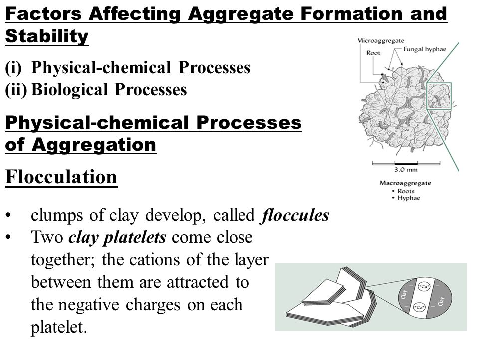 Factors Affecting Aggregate Formation and Stability (i)Physical-chemical Processes (ii)Biological Processes Physical-chemical Processes of Aggregation