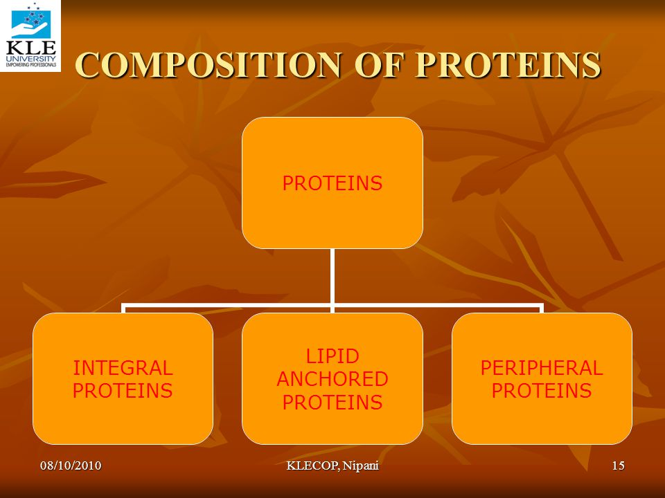 COMPOSITION OF PROTEINS COMPOSITION OF PROTEINS PROTEINS INTEGRAL PROTEINS LIPID ANCHORED PROTEINS PERIPHERAL PROTEINS 08/10/201015KLECOP, Nipani