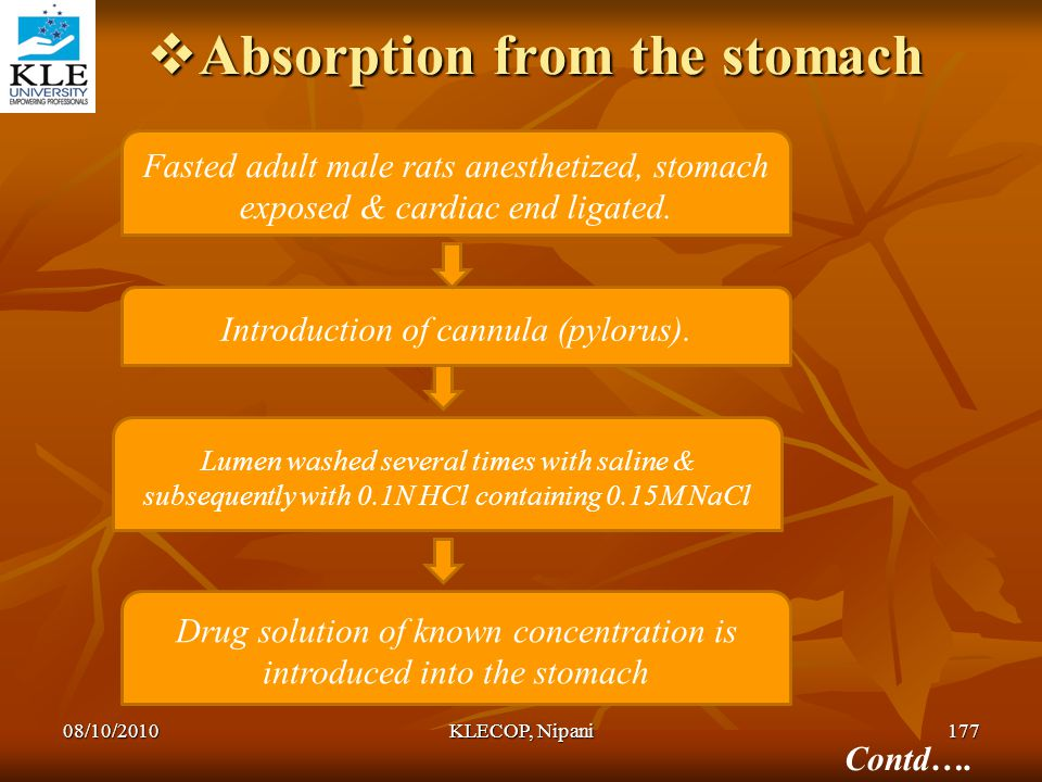  Absorption from the stomach Fasted adult male rats anesthetized, stomach exposed & cardiac end ligated. Introduction of cannula (pylorus). Lumen was