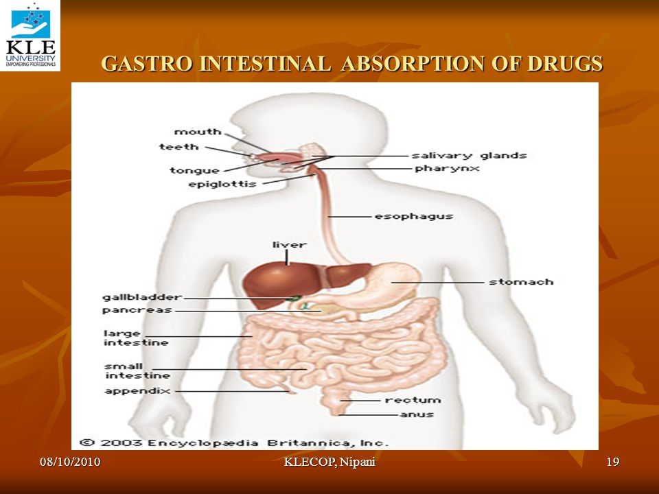 GASTRO INTESTINAL ABSORPTION OF DRUGS GASTRO INTESTINAL ABSORPTION OF DRUGS 08/10/201019KLECOP, Nipani