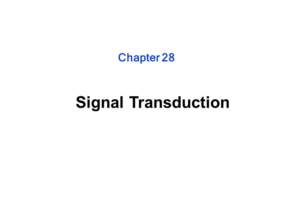 Chapter 28 Signal Transduction