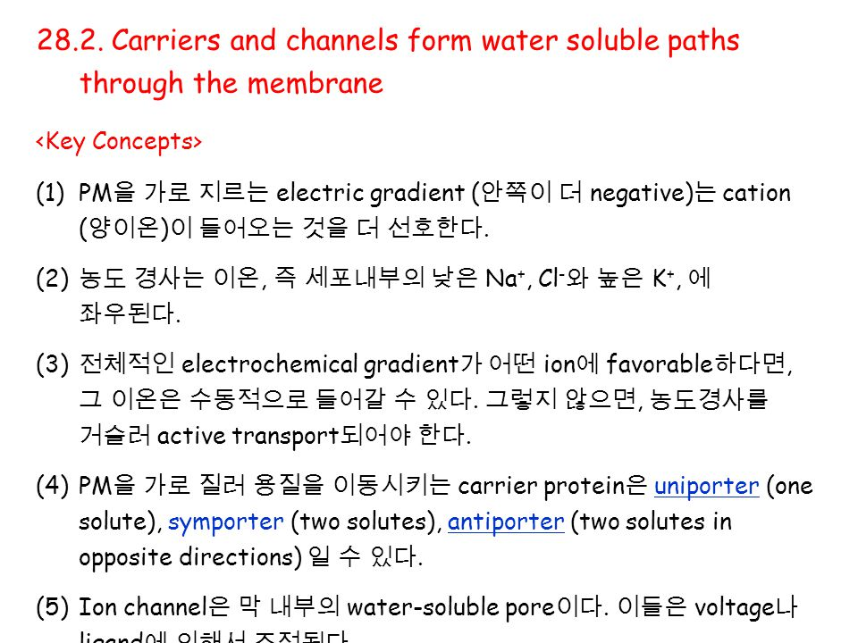 28.2. Carriers and channels form water soluble paths through the membrane (1)PM 을 가로 지르는 electric gradient ( 안쪽이 더 negative) 는 cation ( 양이온 ) 이 들어오는 것