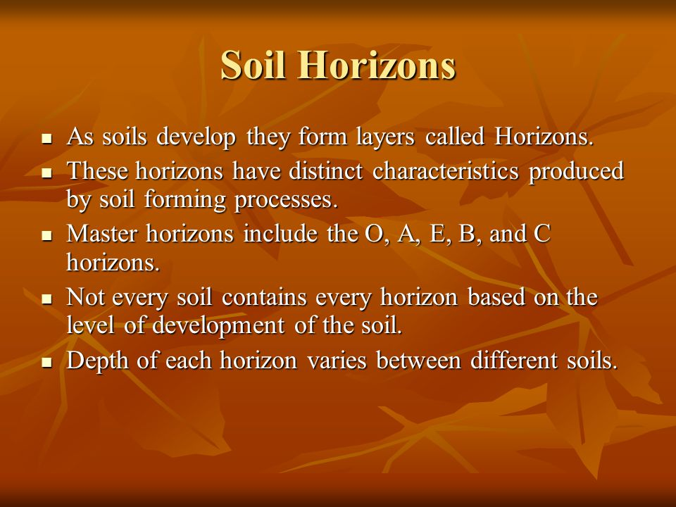 Soil Horizons As soils develop they form layers called Horizons.