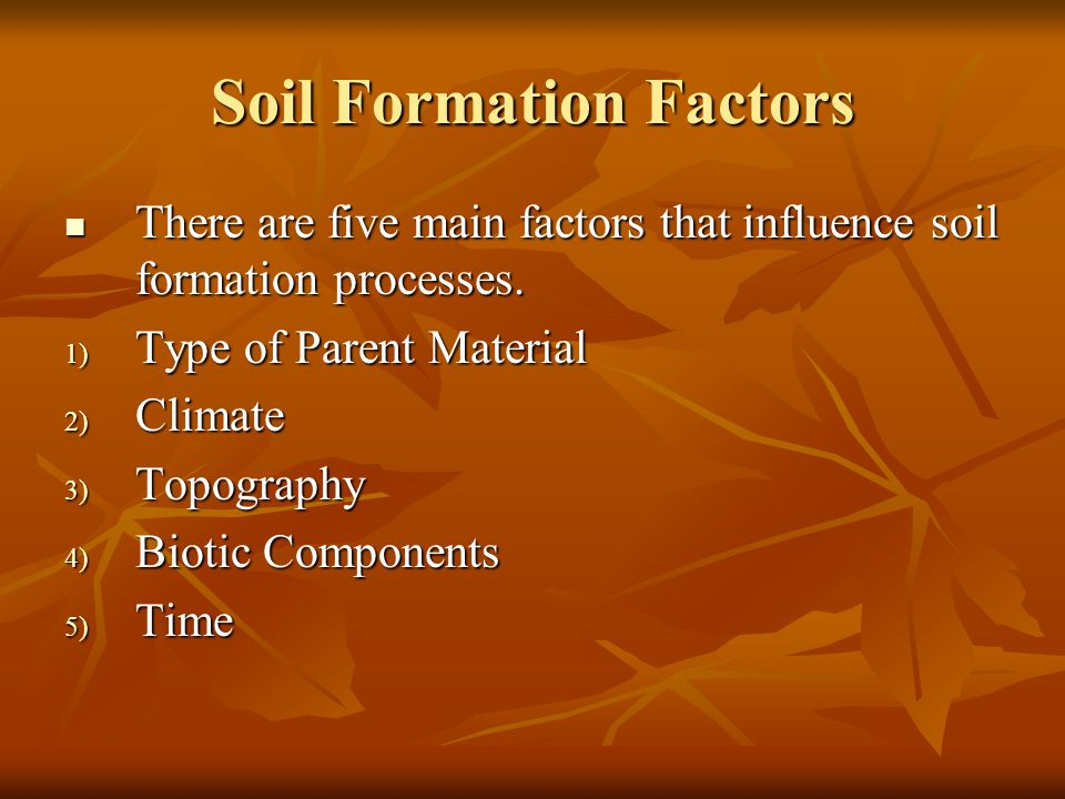 Soil Formation Factors There are five main factors that influence soil formation processes. There are five main factors that influence soil formation