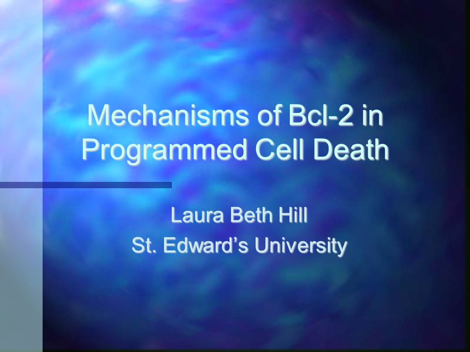 Mechanisms of Bcl-2 in Programmed Cell Death Laura Beth Hill St. Edward's University