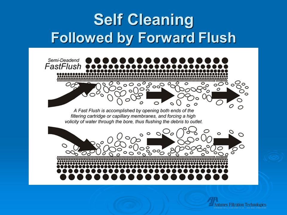 Self Cleaning Followed by Forward Flush