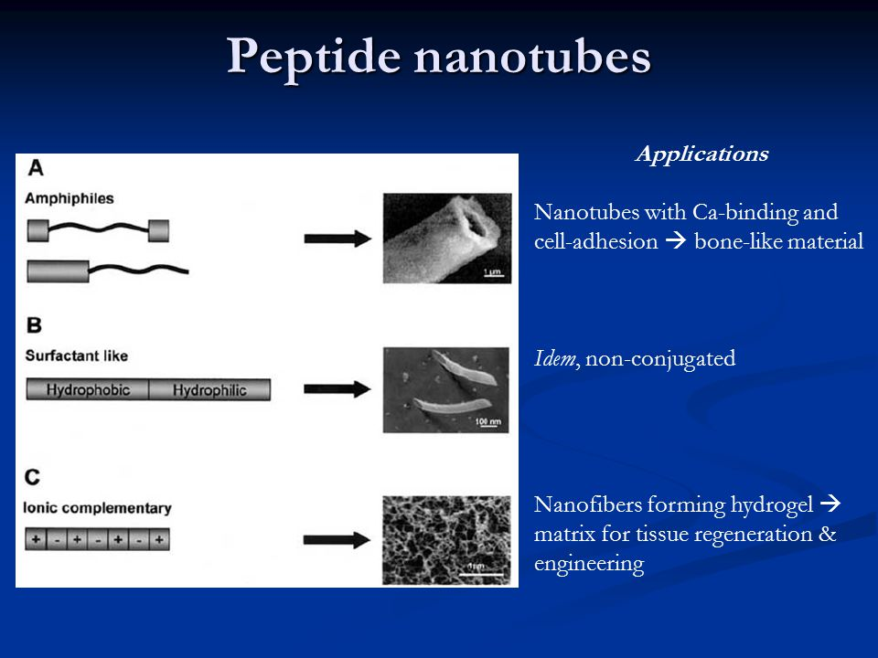 Peptide nanotubes Applications Nanotubes with Ca-binding and cell-adhesion  bone-like material Idem, non-conjugated Nanofibers forming hydrogel  mat
