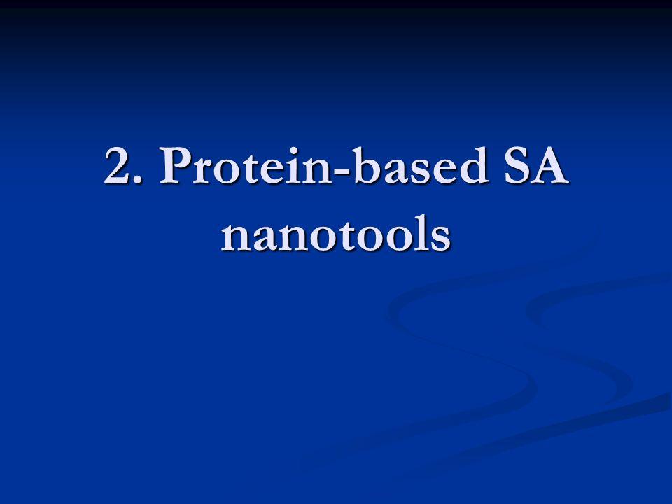 2. Protein-based SA nanotools
