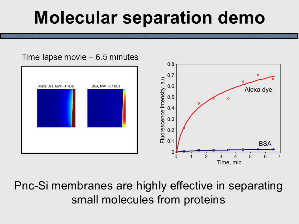 Molecular separation demo Pnc-Si membranes are highly effective in separating small molecules from proteins Time lapse movie – 6.5 minutes