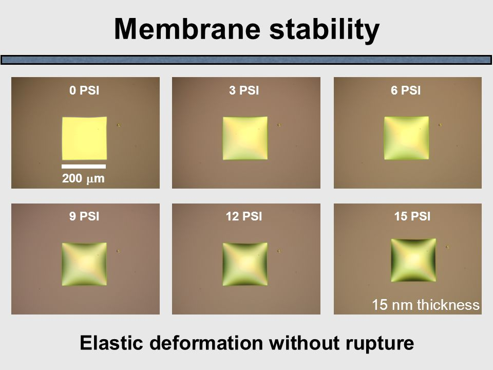 Membrane stability 15 PSI 9 PSI 6 PSI 3 PSI 0 PSI 12 PSI Elastic deformation without rupture 200  m 15 nm thickness