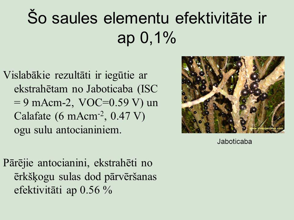 Šo saules elementu efektivitāte ir ap 0,1% Vislabākie rezultāti ir iegūtie ar ekstrahētam no Jaboticaba (ISC = 9 mAcm-2, VOC=0.59 V) un Calafate (6 mAcm -2, 0.47 V) ogu sulu antocianiniem.