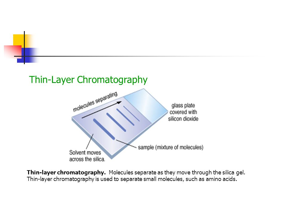 Thin-Layer Chromatography Thin-layer chromatography.