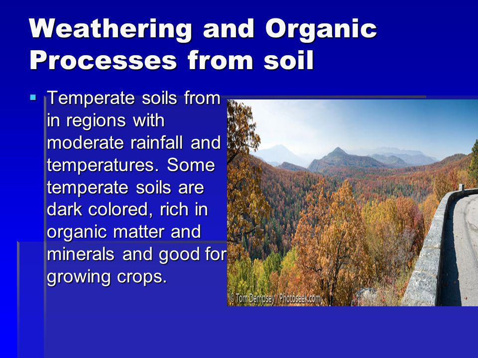 Weathering and Organic Processes from soil  Temperate soils from in regions with moderate rainfall and temperatures. Some temperate soils are dark co