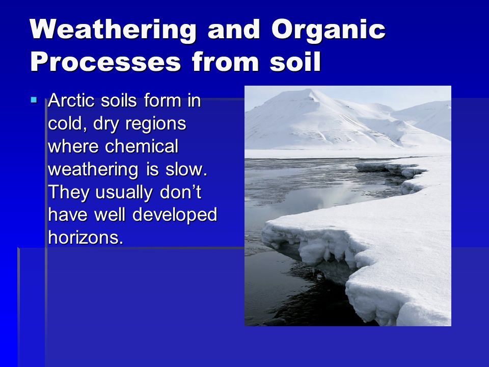 Weathering and Organic Processes from soil  Arctic soils form in cold, dry regions where chemical weathering is slow. They usually don't have well de
