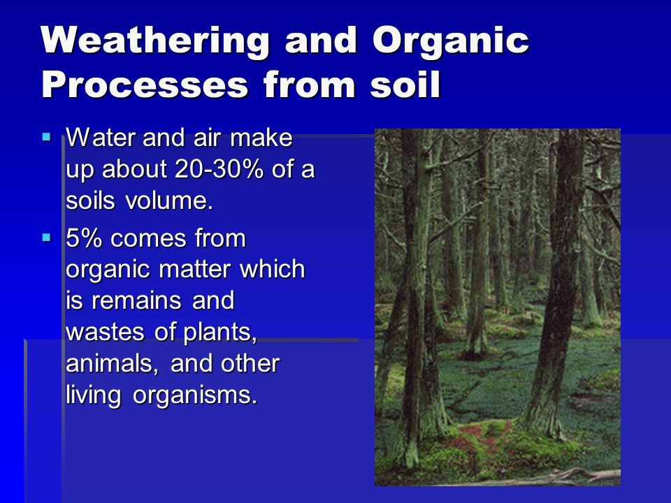 Weathering and Organic Processes from soil  Water and air make up about 20-30% of a soils volume.  5% comes from organic matter which is remains and