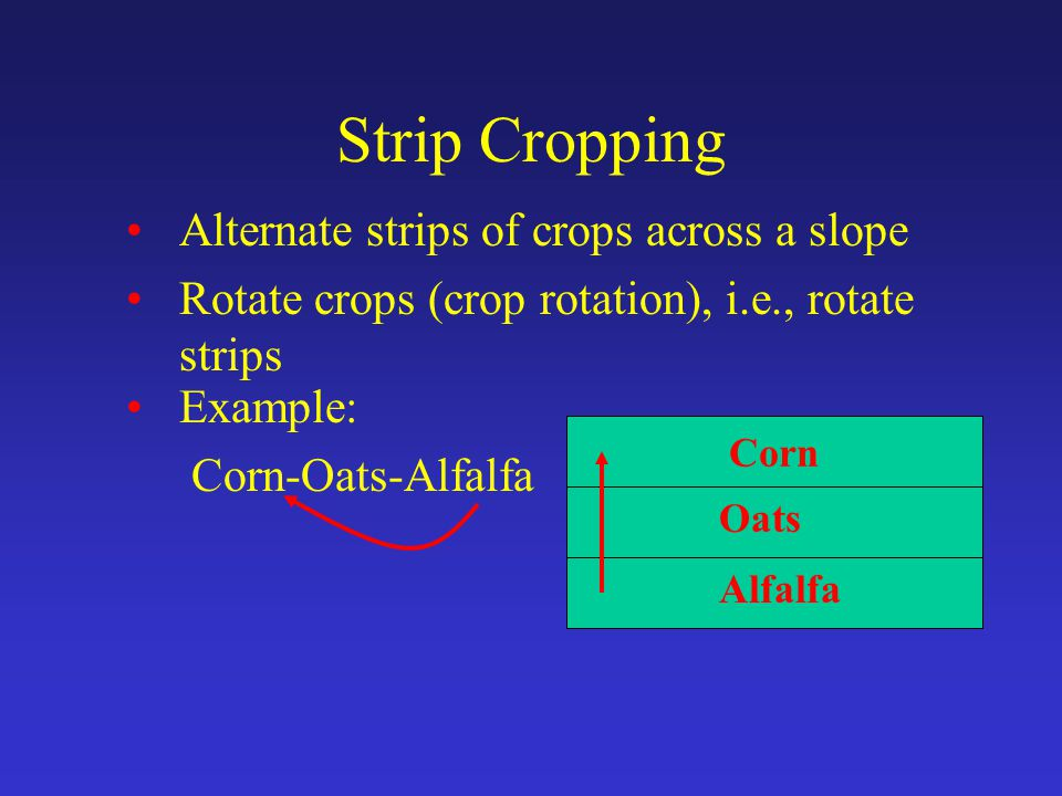 Corn Strip Cropping Alternate strips of crops across a slope Rotate crops (crop rotation), i.e., rotate strips Example: Corn-Oats-Alfalfa Oats Alfalfa