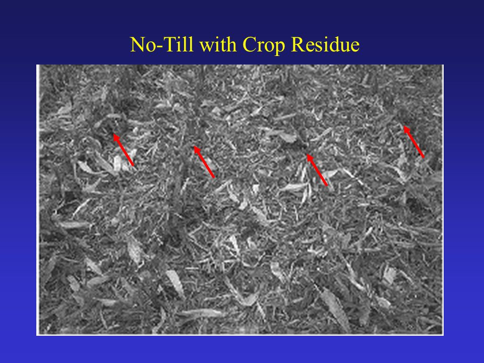 No-Till with Crop Residue