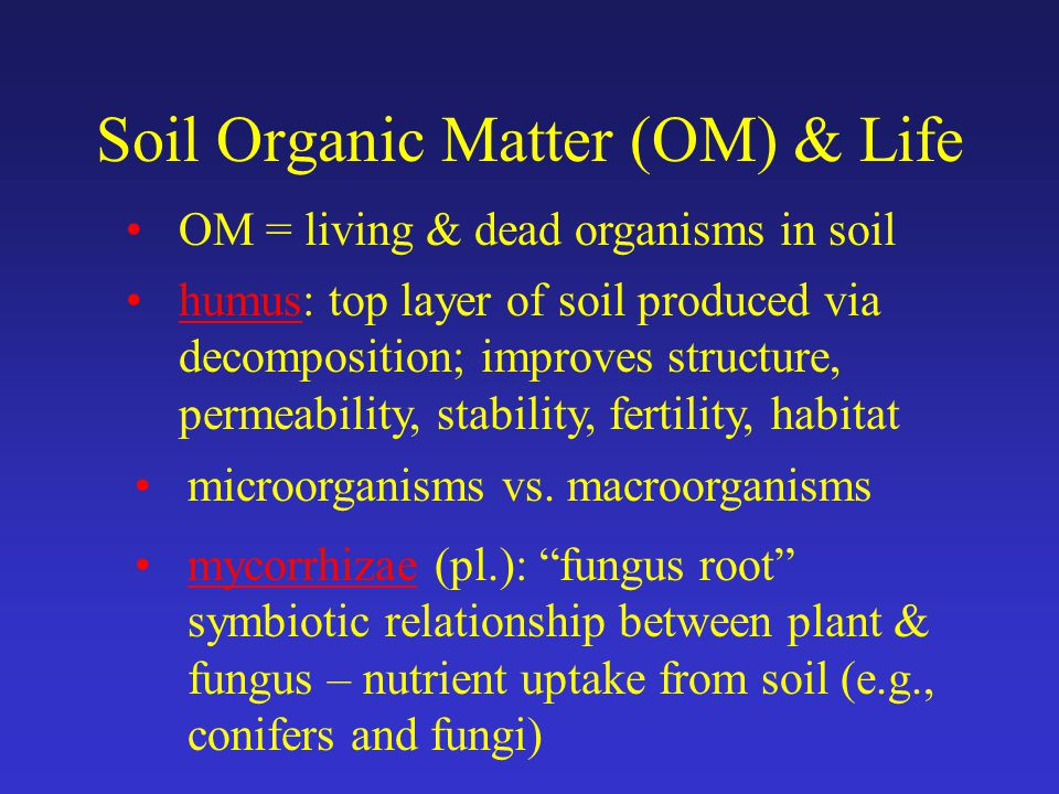 Soil Organic Matter (OM) & Life OM = living & dead organisms in soil humus: top layer of soil produced via decomposition; improves structure, permeability, stability, fertility, habitat microorganisms vs.