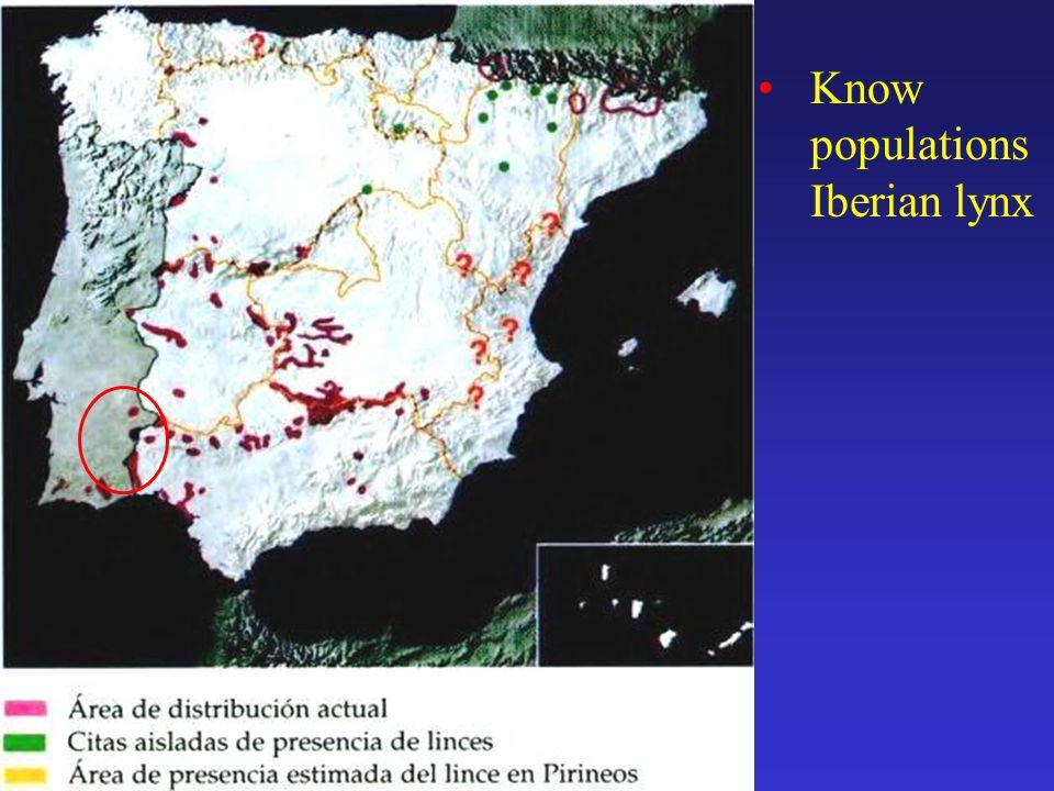 Know populations Iberian lynx