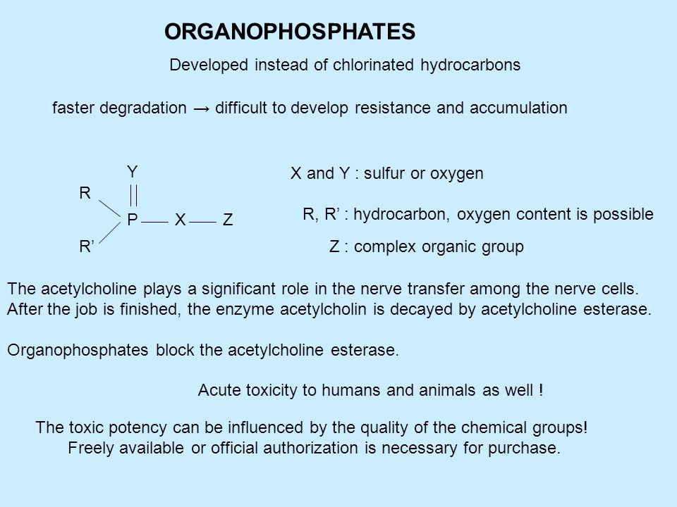 ORGANOPHOSPHATES Developed instead of chlorinated hydrocarbons faster degradation → difficult to develop resistance and accumulation R R' P Y XZ X and