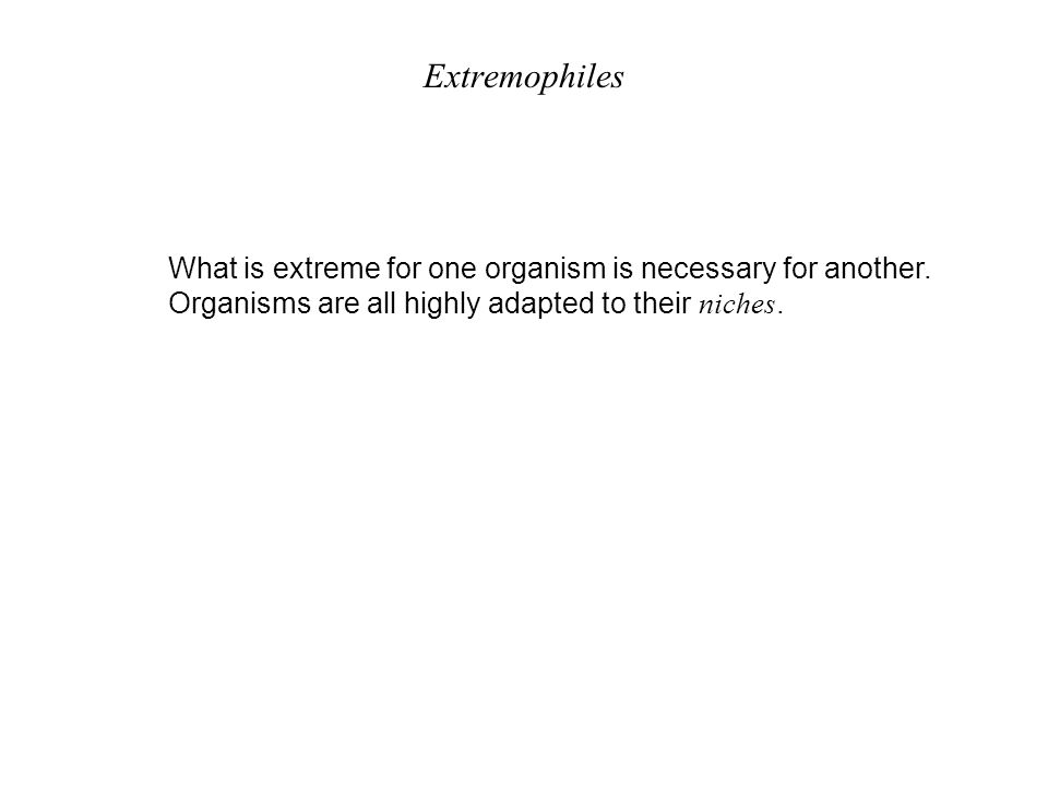 Extremophiles What is extreme for one organism is necessary for another. Organisms are all highly adapted to their niches.
