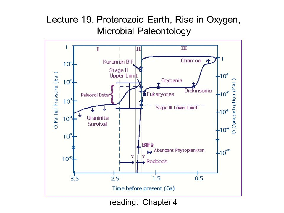 Lecture 19. Proterozoic Earth, Rise in Oxygen, Microbial Paleontology reading: Chapter 4