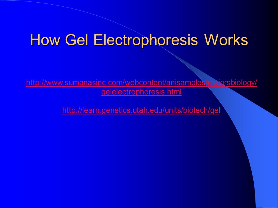 http://www.sumanasinc.com/webcontent/anisamples/majorsbiology/ gelelectrophoresis.html http://learn.genetics.utah.edu/units/biotech/gel How Gel Electrophoresis Works