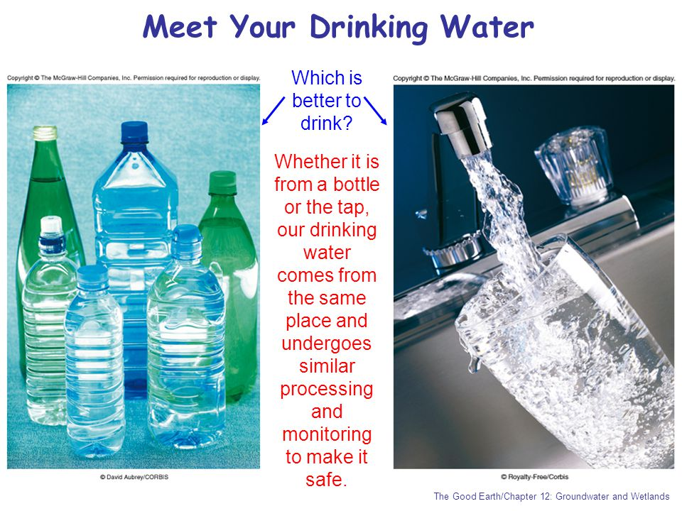 The Good Earth/Chapter 12: Groundwater and Wetlands Meet Your Drinking Water Which is better to drink? Whether it is from a bottle or the tap, our dri