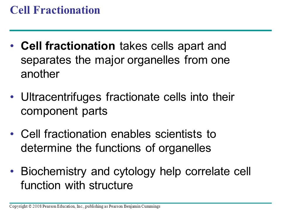 Cell Fractionation Cell fractionation takes cells apart and separates the major organelles from one another Ultracentrifuges fractionate cells into their component parts Cell fractionation enables scientists to determine the functions of organelles Biochemistry and cytology help correlate cell function with structure Copyright © 2008 Pearson Education, Inc., publishing as Pearson Benjamin Cummings