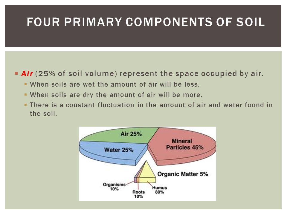  Organic matter, which accounts for about 5% of the soil, is partially decomposed plant and animal matter.