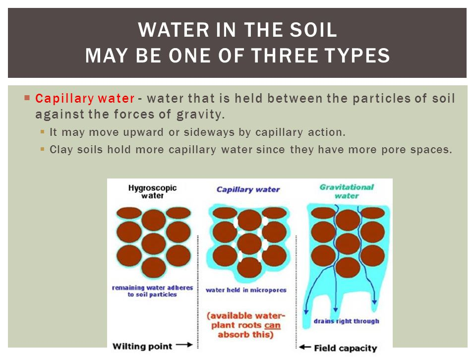  Gravitational water - water that drains through the pore spaces in the soil as a result of gravity.