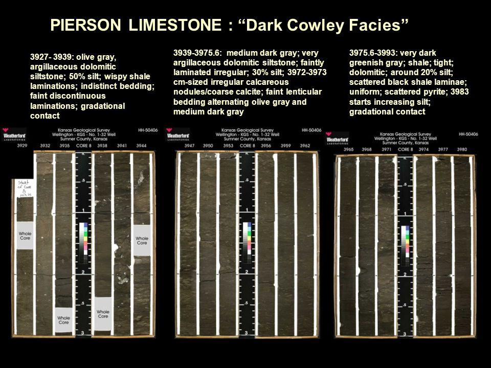 3927- 3939: olive gray, argillaceous dolomitic siltstone; 50% silt; wispy shale laminations; indistinct bedding; faint discontinuous laminations; grad