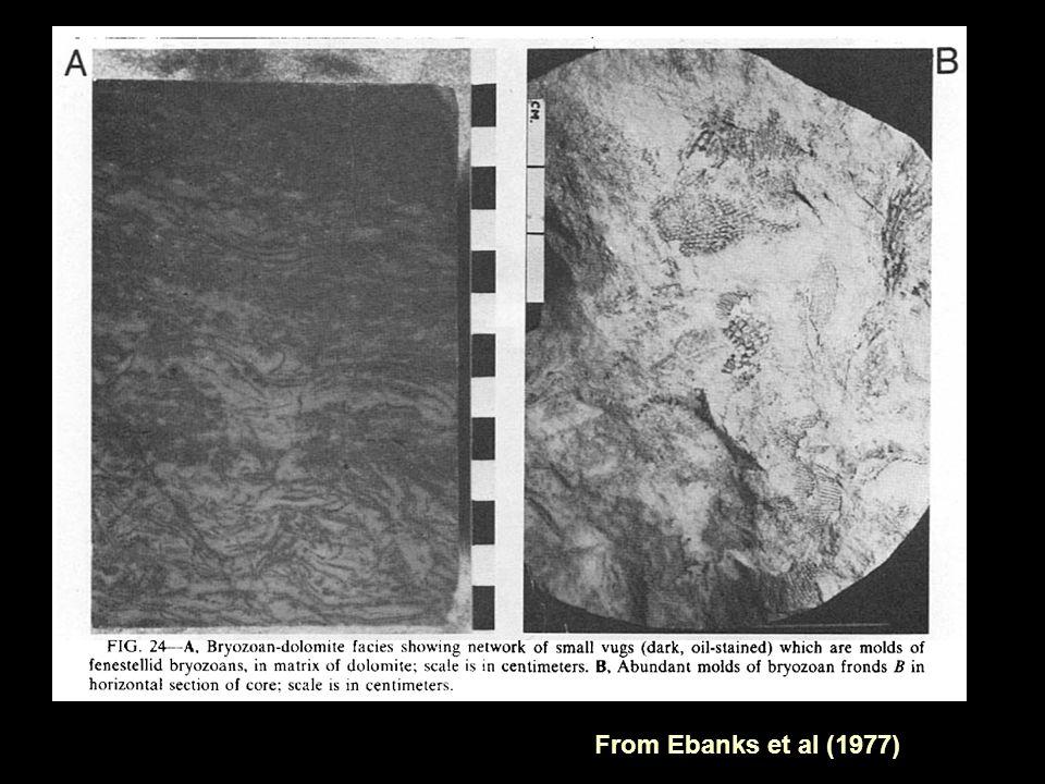 From Ebanks et al (1977)